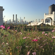 Brooklyn Grange Rooftop Farm At Brooklyn Navy Yard Small
